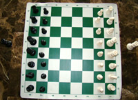 Chess Pieces and Vinyl Rollup Chessboard